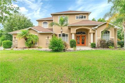 Spring Hill Single Family Home For Sale: 372 Florian Way