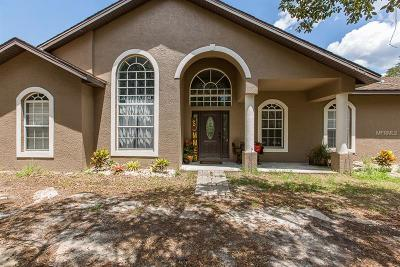 New Port Richey Single Family Home For Sale: 10712 Hilltop Drive