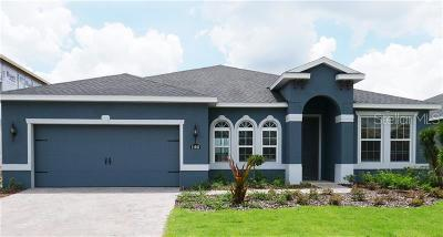 Riverveiw, Riverview, Riverview/tampa Single Family Home For Sale: 11640 Lake Lucaya Drive