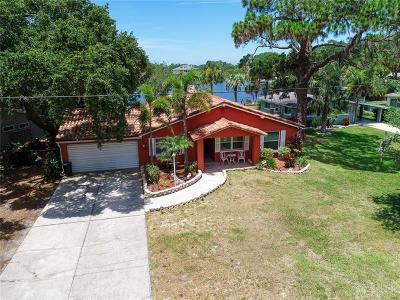 New Port Richey Single Family Home For Sale: 7051 Morningstar Lane