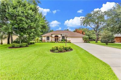 Spring Hill Single Family Home For Sale: 4395 Rachel Boulevard