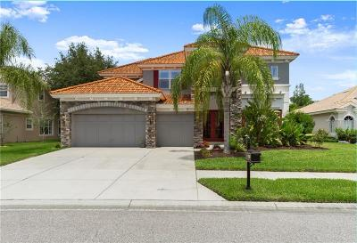 New Port Richey Single Family Home For Sale: 11317 Biddeford Place