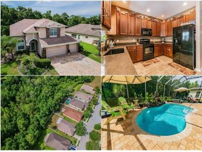 New Port Richey Single Family Home For Sale: 9549 Marblehead Lane