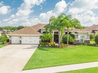 Tarpon Spring, Tarpon Springs Single Family Home For Sale: 3175 Foxwood Lane