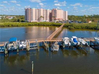 New Port Richey Condo For Sale: 4516 Seagull Drive #313