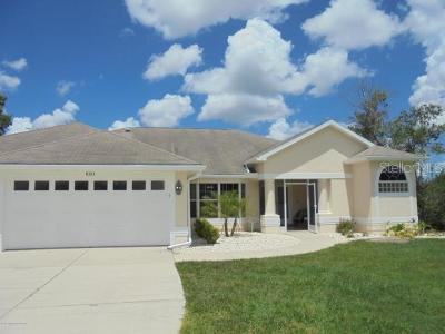 Dade City, San Antonio, Wesley Chapel, Brooksville Single Family Home For Sale: 8325 Madison St