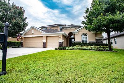 New Port Richey Single Family Home For Sale: 11436 Tayport Loop