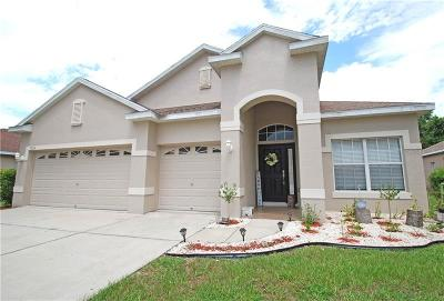 New Port Richey Single Family Home For Sale: 9234 Edistro Place