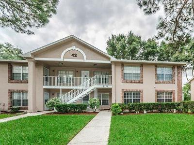 Pasco County Condo For Sale: 6700 Spring Flower Drive #15
