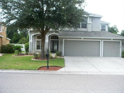 New Port Richey Single Family Home For Sale: 11203 Oyster Bay Circle