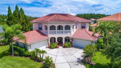 Hernando County, Hillsborough County Single Family Home For Sale: 4311 Harborwatch Lane