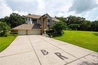 Brooksville FL Single Family Home For Sale: $1,775,000