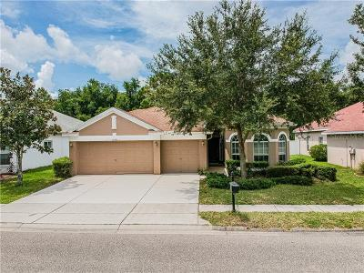 New Port Richey, New Port Richie Single Family Home For Sale: 11246 Oyster Bay Circle