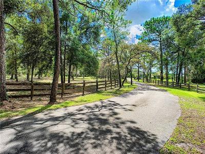 Brooksville Single Family Home For Sale: 15950 Sam C Road