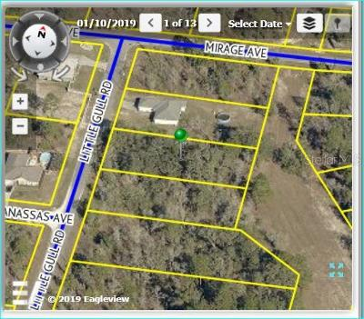 Hernando County, Hillsborough County, Pasco County, Pinellas County Residential Lots & Land For Sale: 11262 Little Gull Road