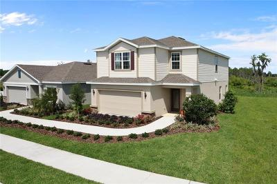 Clermont Single Family Home For Sale: 17544 Butterfly Pea Lane