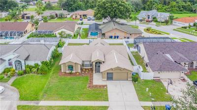 New Port Richey Single Family Home For Sale: 5511 Los Palos Drive