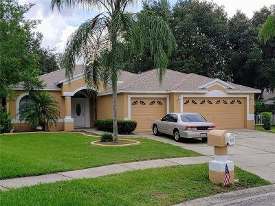 Valrico Single Family Home For Sale: 2907 Folklore Drive