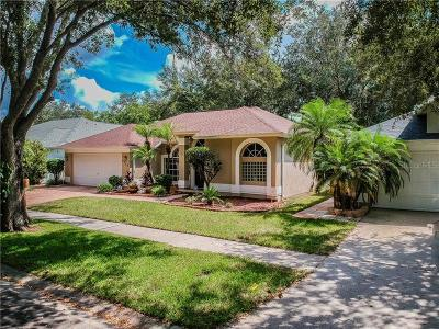 Tampa Single Family Home For Sale: 3722 Cypress Meadows Road