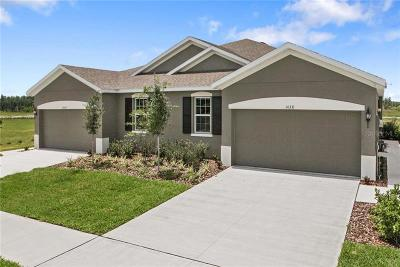 Hernando County, Hillsborough County, Pasco County, Pinellas County Villa For Sale: 10424 Heron Hideaway Loop