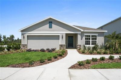 Clermont, Champions Gate, Championsgate, Davenport, Winter Garden, Windermere, Orlando, Kissimmee Single Family Home For Sale: 110 Loblolly Lane