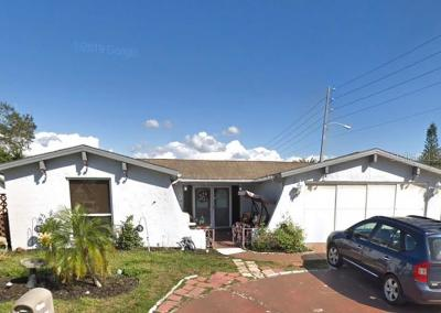 Hillsborough County, Pasco County, Pinellas County Single Family Home For Sale: 9006 CHANTILLY LANE