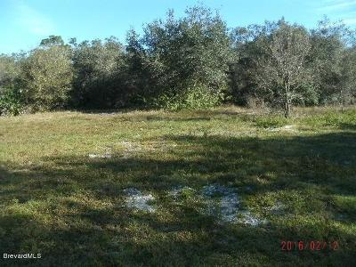 Brevard County Residential Lots & Land For Sale: 825 NE Cricket Drive
