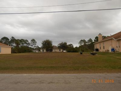 Brevard County Residential Lots & Land For Sale: 2787 SW Fitzpatrick Avenue SW #30
