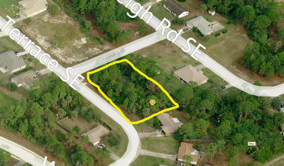 Brevard County Residential Lots & Land For Sale: 991 Hattaras SE