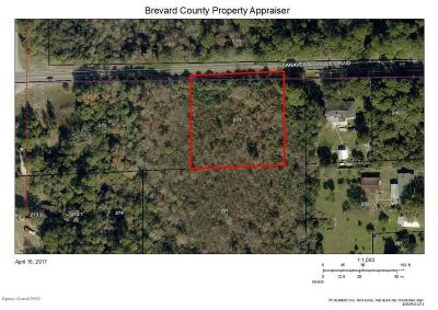 Residential Lots & Land For Sale: Canaveral Groves Boulevard