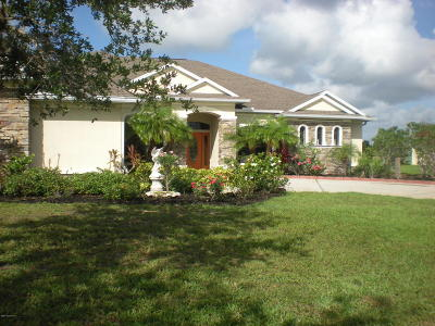 Palm Bay Single Family Home For Sale: 2100 SE Windbrook Drive SE