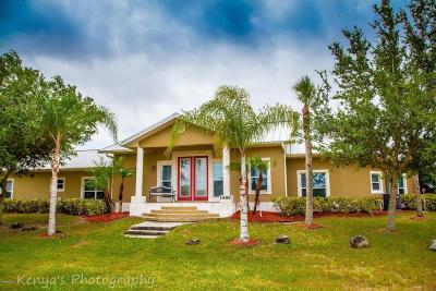 Merritt Island Single Family Home For Sale: 1485 D'albora Road