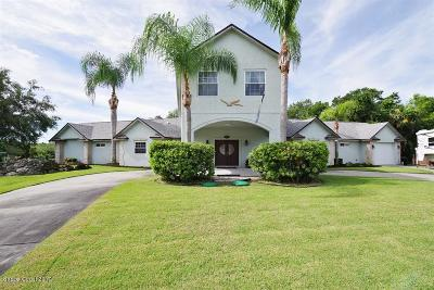 Palm Bay Single Family Home For Sale: 1151 River Drive NE