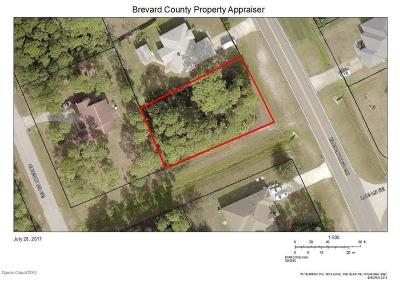 Brevard County Residential Lots & Land For Sale: 2940 Eldron Boulevard SE