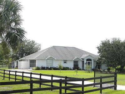 Palm Bay Single Family Home For Sale: 328 Deer Run Road