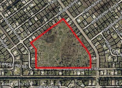 Residential Lots & Land For Sale: Westunder Street SE