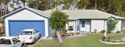 Brevard County Single Family Home For Sale: 6760 Anecia Avenue