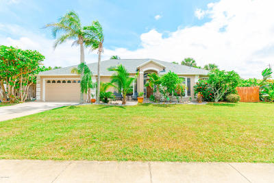 Single Family Home For Sale: 145 8th Avenue