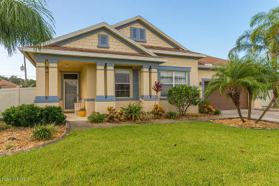 Palm Bay Single Family Home For Sale: 449 Pasto Circle SW