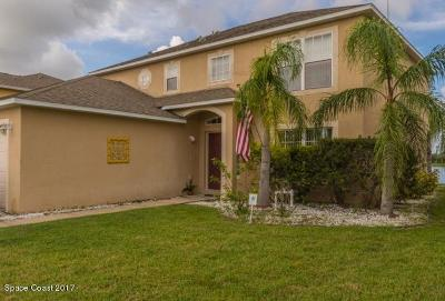 Palm Bay Single Family Home For Sale: 1965 NW Snapdragon Drive NW