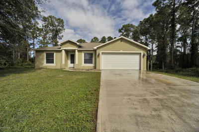 Palm Bay Single Family Home For Sale: 251 Garylind Street SW