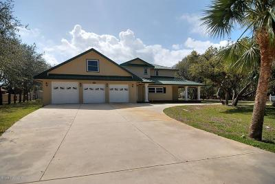 Cape Canaveral Single Family Home For Sale: 210 Holman Road