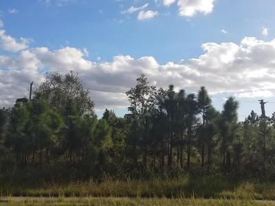 Brevard County Residential Lots & Land For Sale: 0001 Cogan Drive SE