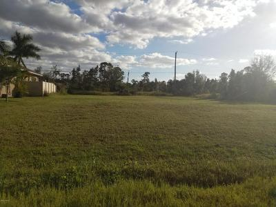 Brevard County Residential Lots & Land For Sale: 0002 Cogan Drive SE