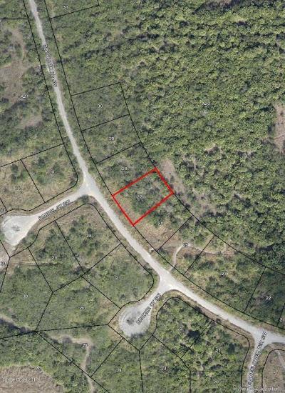 Brevard County Residential Lots & Land For Sale: 2761 Glenrock Road SW