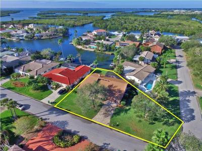 Brevard County Single Family Home For Sale: 33 Yawl Drive