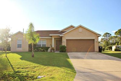 Brevard County Single Family Home For Sale: 578 Wicker Road SW
