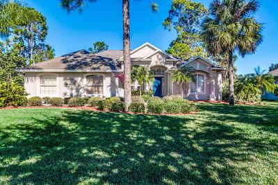 Palm Bay Single Family Home For Sale: 1831 SE Winding Ridge Circle SE
