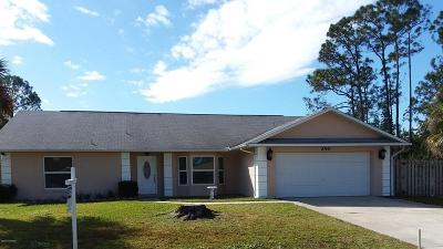 Palm Bay Single Family Home For Sale: 250 NE Pelican Drive NE