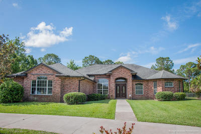 Single Family Home For Sale: 1751 Flamevine Place